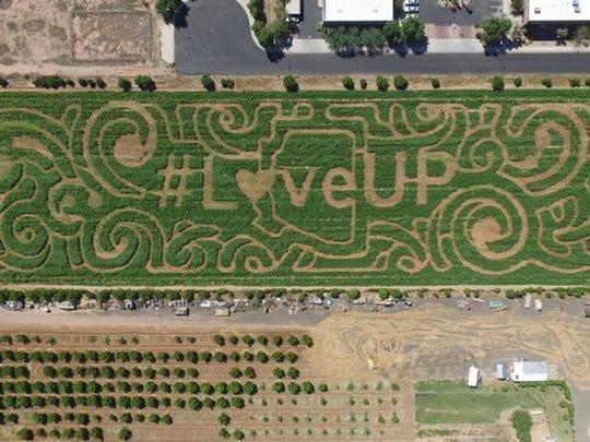 Vertuccio Farms