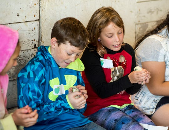 Capac Elementary fourth-graders Connor Powers, left, and Aubrey Baier hold baby chicks Wednesday, Sept. 26, 2018 during Rural Education Day at Goodells County Park.