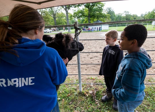 Morton Elementary fourth-graders Jakoby Phillips, center, and Brycen Aud, right, take a look at Tilly, a 1-year-old beef cow while Cady Wallace, 15, holds her Wednesday, Sept. 26, 2018 during Rural Education Day at Goodells County Park.