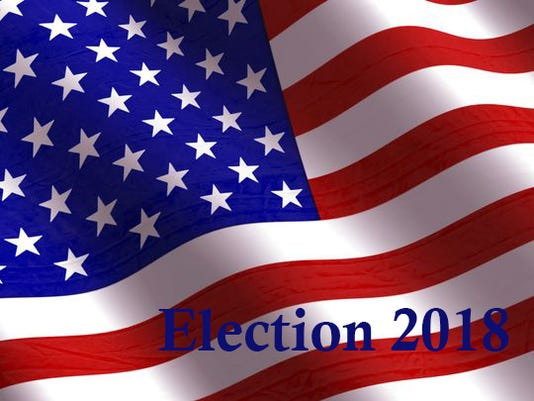 Election 2018 flag
