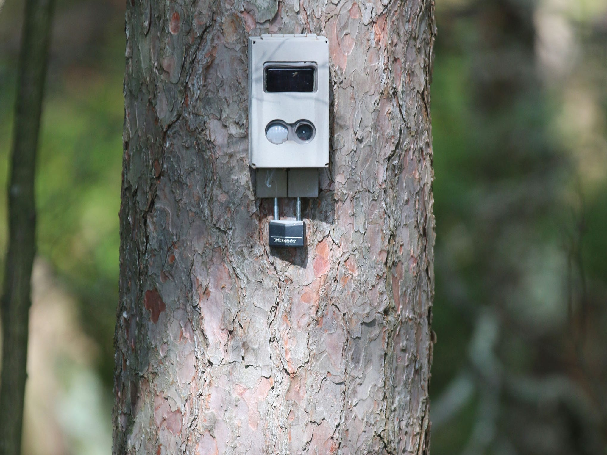 A trail camera on the Kohler Company side as viewed from the Kohler-Andrae State Park northern boarder as seen, Wednesday September 26, 2018, in Sheboygan, Wis.