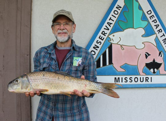 Nixa angler Jay Heselton holds the fish that initially looked like it might break a state and world record.  He caught it last month in the James River using a fly rod and home-made fly.