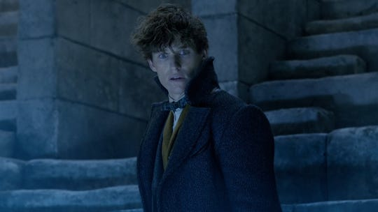 "Eddie Redmayne reprises his role as Newt Scamander in ""Fantastic Beasts: The Crimes of Grindelwald."""