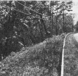 The 'Lady in White' of Devil's Elbow: A ghost story of the Southern Tier