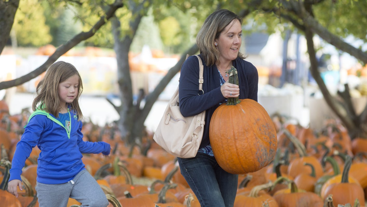 Cherry Hill gave away free pumpkins after Harvest Festival canceled