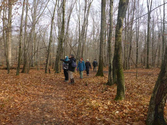 Naturalist-led Forest Fitness Walks take place fall, winter, and spring at the Environmental Education Center, 190 Lord Stirling Road in Basking Ridge.
