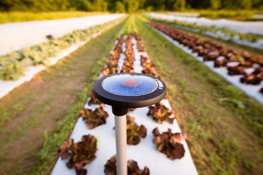 The Arable Mark, a field-level weather and crop monitoring device that collects over 40 field-specific data metrics.