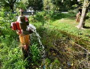 At the intersection of Parchment's Travis and North 20th street, a hydrant flushes water from the system into a creekbed.
