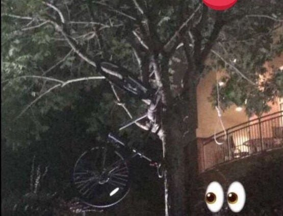 Photo of the noose from a South Alabama student.