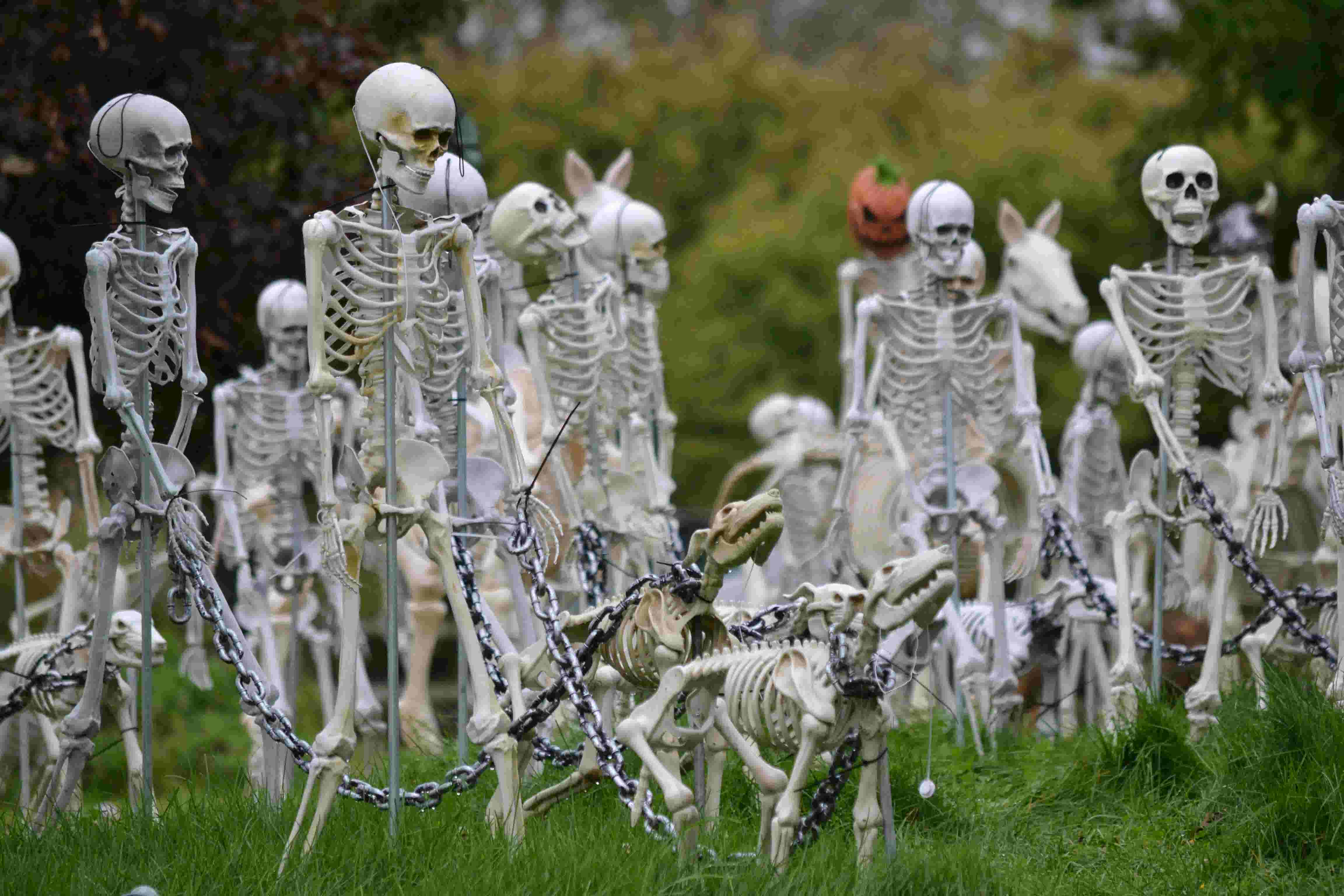 Halloween Displays Around Rochester Region Canandaigua House You