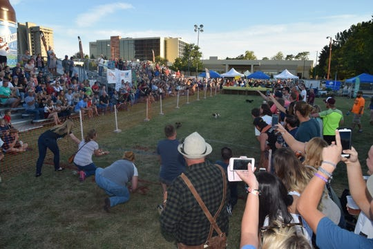 The wiener dog race at Oktoberfest is incredibly popular.