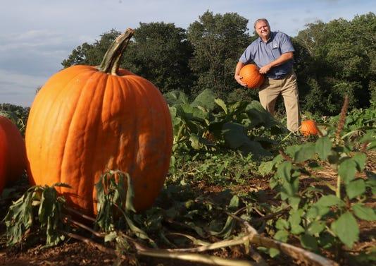 Wil Harvest Weather