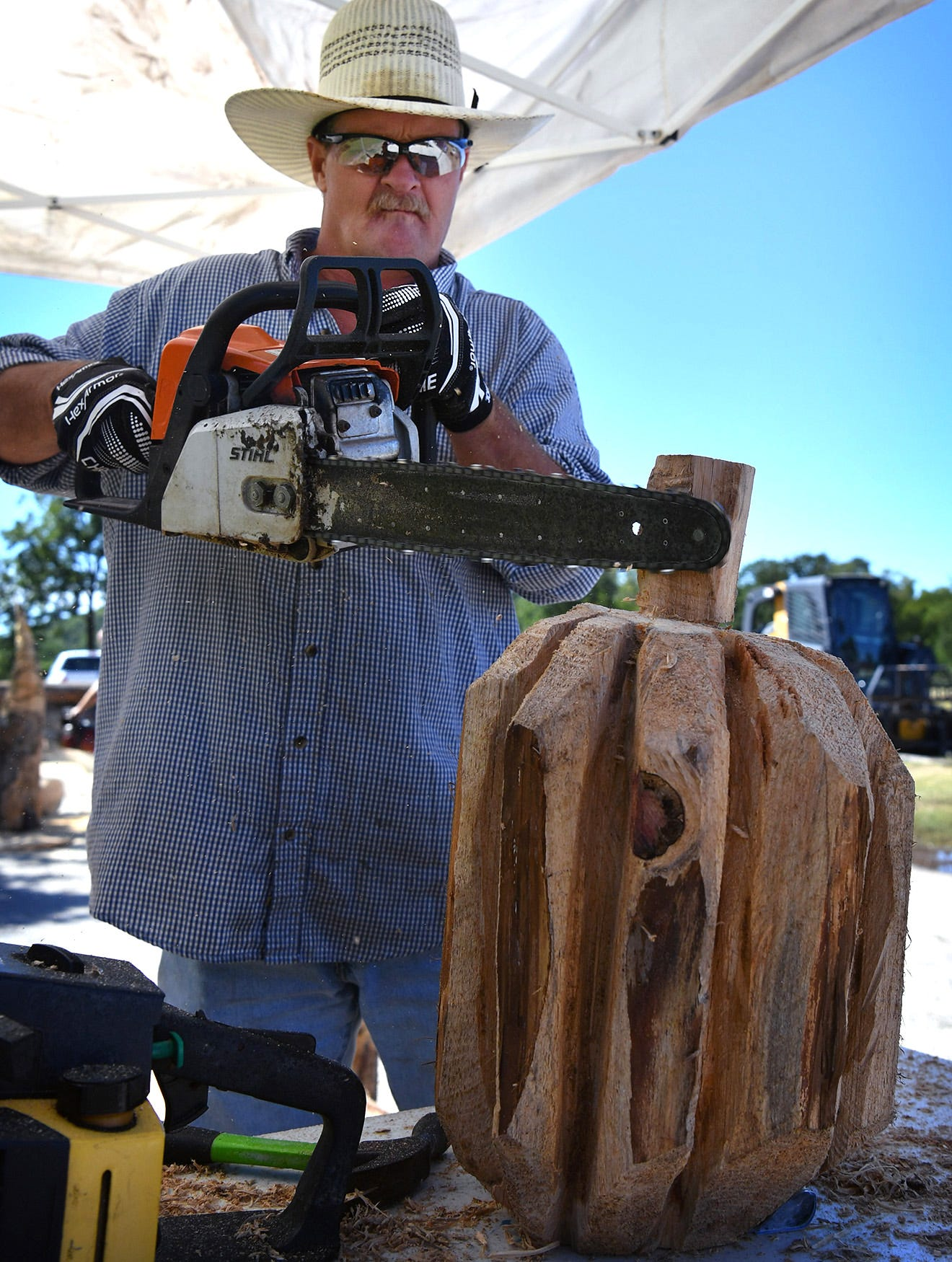 Chainsaw carvers create art from stumps at rendezvous in graham