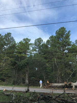 On Friday, Steve Wilkinson, meterologist in charge of the National Weather Service's Greer station, surveys damage caused by a storm on Thursday, Sept. 27, 2018.