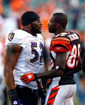 Cincinnati Bengals wide receiver Chad Ochocinco (85) and Baltimore Ravens linebacker Ray Lewis (52) have words at the end of the game at Paul Brown Stadium in Cincinnati, OH on Nov. 8, 2009.