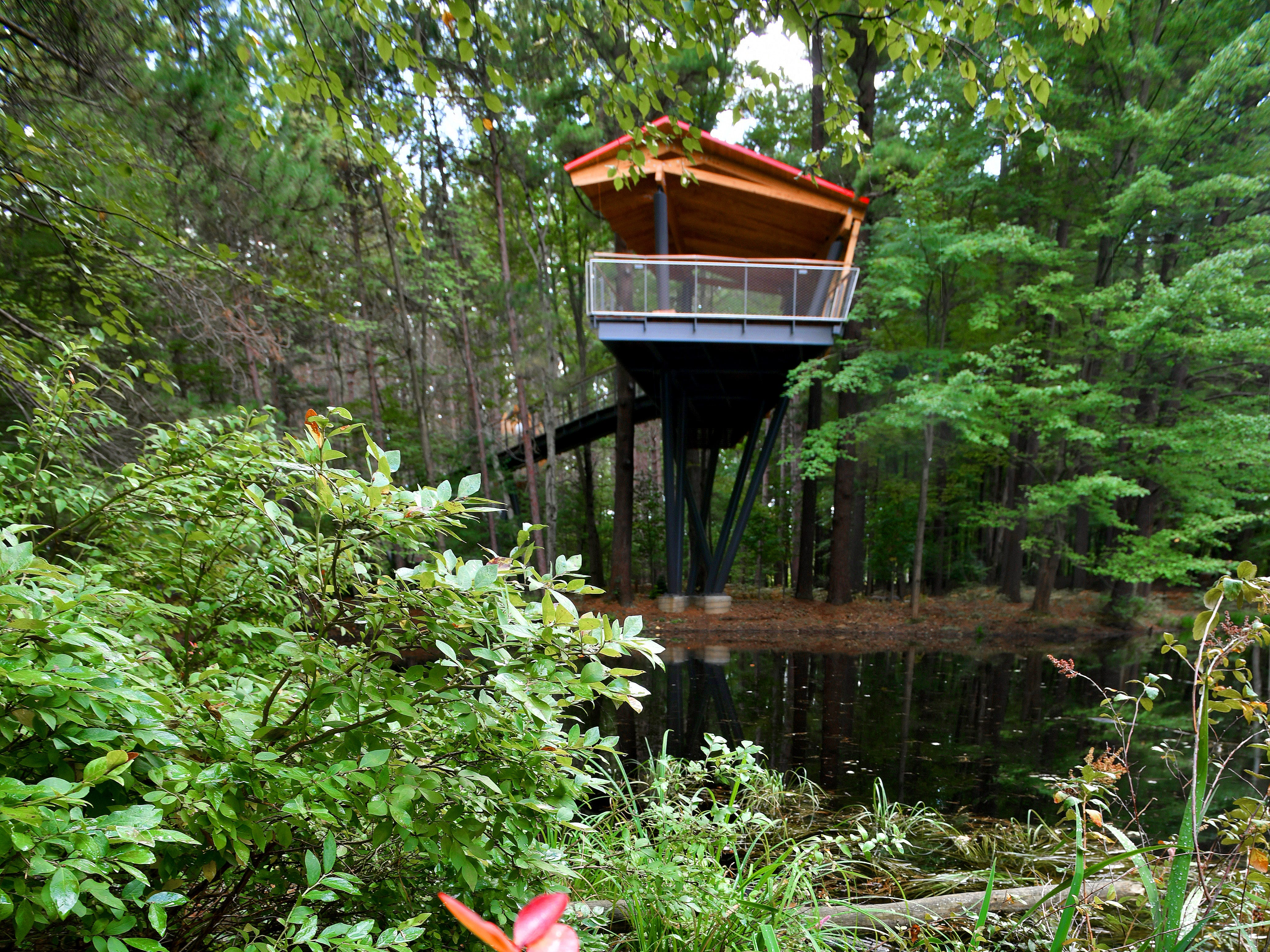 """Native blueberry plants are beginning to turn crimson near the structure at the end of the """"Pond Arm,"""" overlooking one of two ponds on the property."""