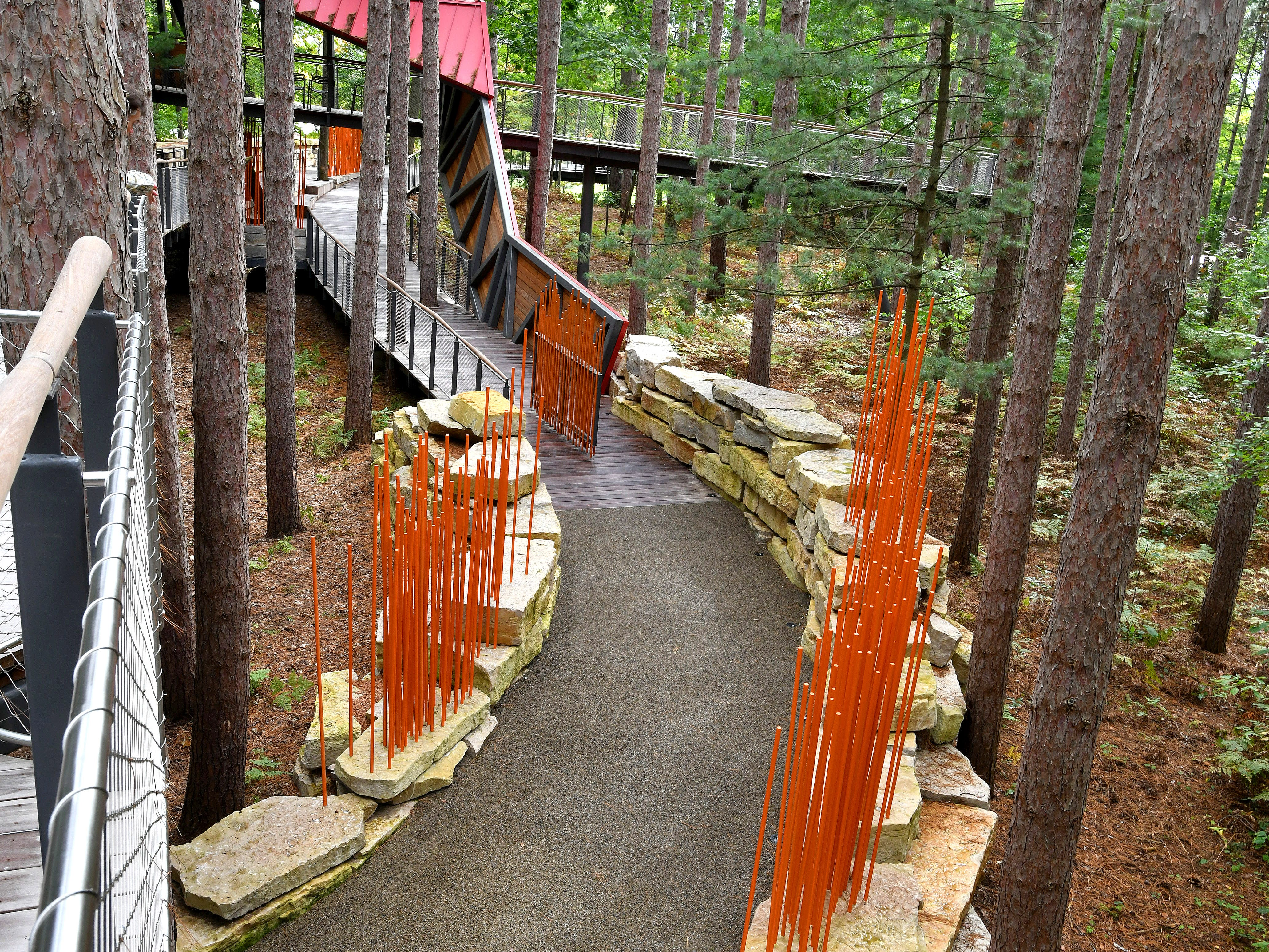 Walks intersect amid a stand of Red Pines to create the Canopy Walk.  Access to the walk slopes gently, allowing those in wheelchairs and the handicapped to enjoy the experience.