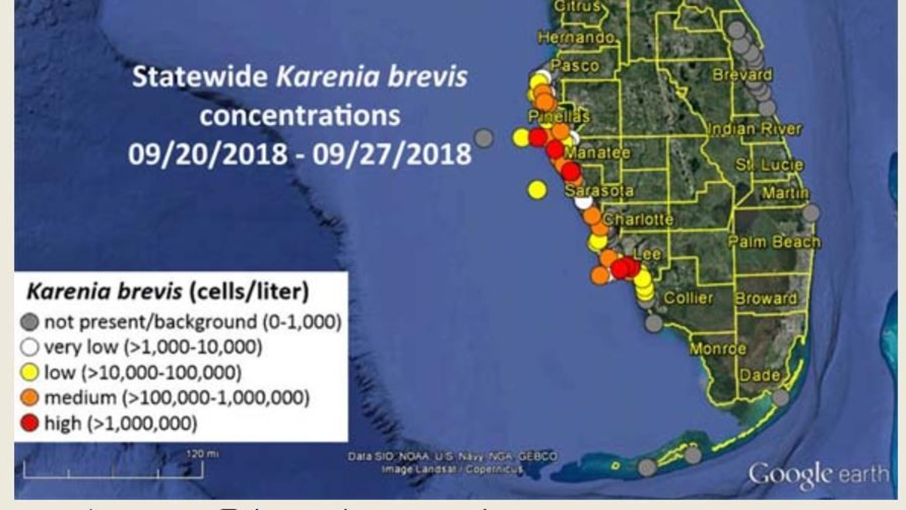 State reports low to high red tide counts in Fort Myers Sanibel area