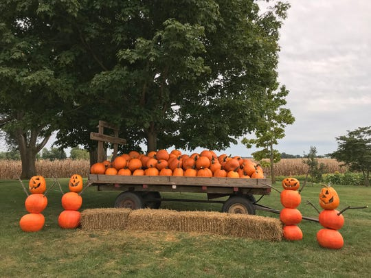 The pumpkin people at Kent's Cucurbits are a family tradition and are changed every week.