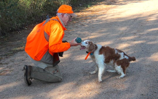 Gary Zimmer of Rhinelander, Wisconsin gives his dog, Scout, a drink of water during a hunt for ruffed grouse and woodcock near Rhinelander, Wisconsin.