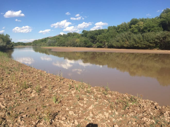 Rio Grande near Elephant Butte Reservoir.