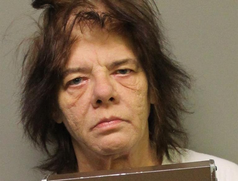 Melanie Jane Gallagher, 58, of Mt. Pleasant Township, was charged with fleeing police and DUI.