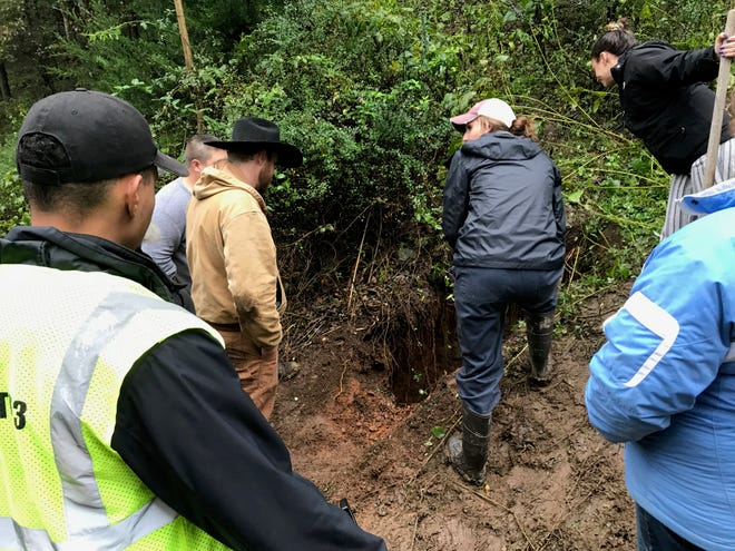 Efforts to save a cow that fell into a sinkhole near Churchville on Thursday were unsuccessful.