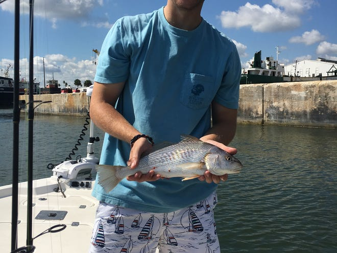 Croakers are still here.  Andrew showing off a nice size croaker caught recently.