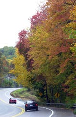 Fall leaves along route 9 in Cortlandt.