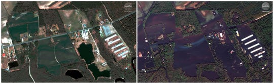 This combination of satellite images provided by DigitalGlobe shows farm land on April 6, 2018, left, before Hurricane Florence moved through the area and after the storm on Thursday, Sept. 20 near Wallace, N.C. Hurricane Florence is testing the resolve of farmers in the Carolinas, who could face billions of dollars in agricultural damage while still feeling the sting from Hurricane Matthew in 2016. Early farm reports confirm pre-storm worries about losses to tobacco, cotton and corn crops.