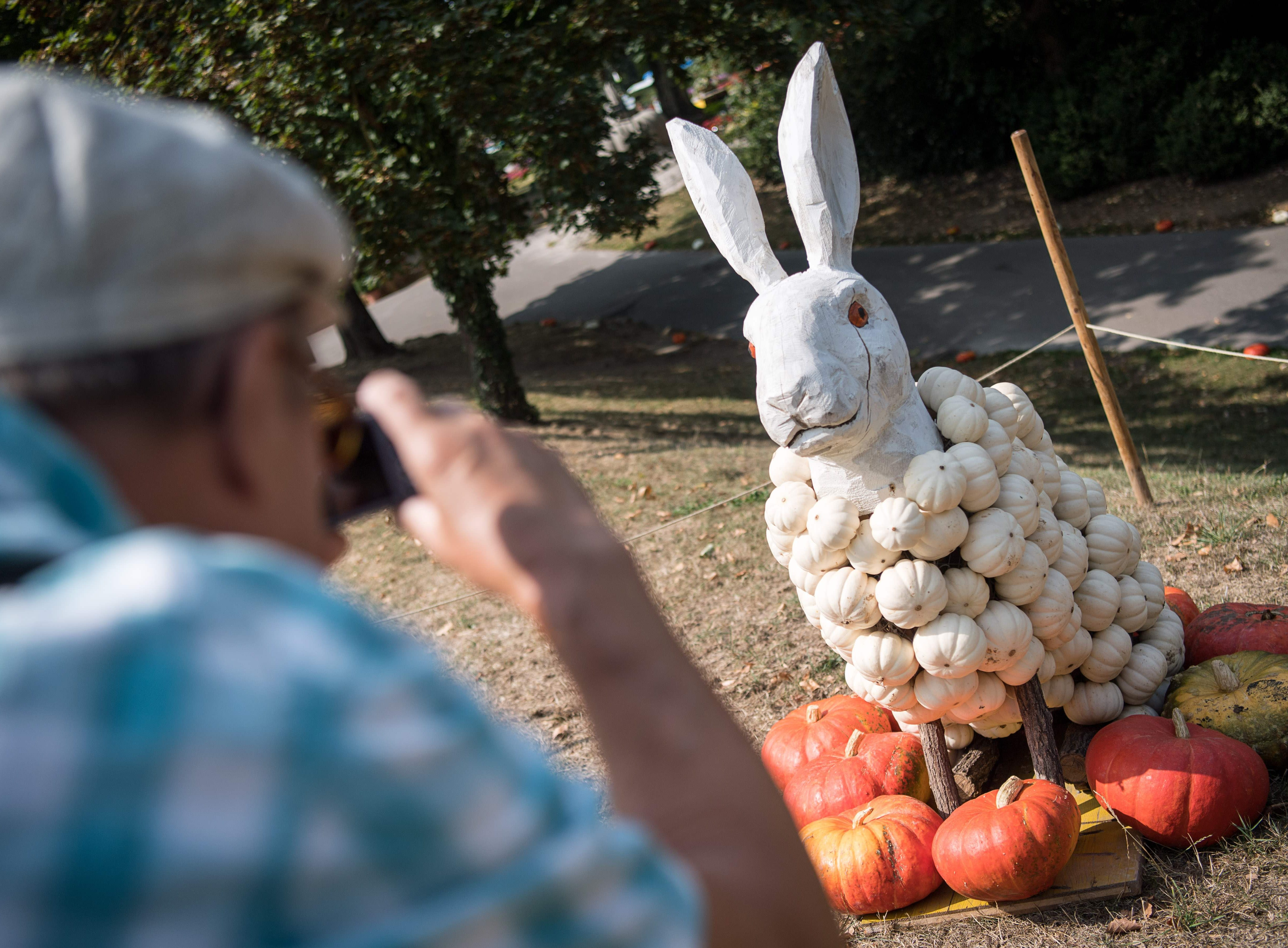 The Ludwigsburg exhibit also featured a pumpkin rabbit.