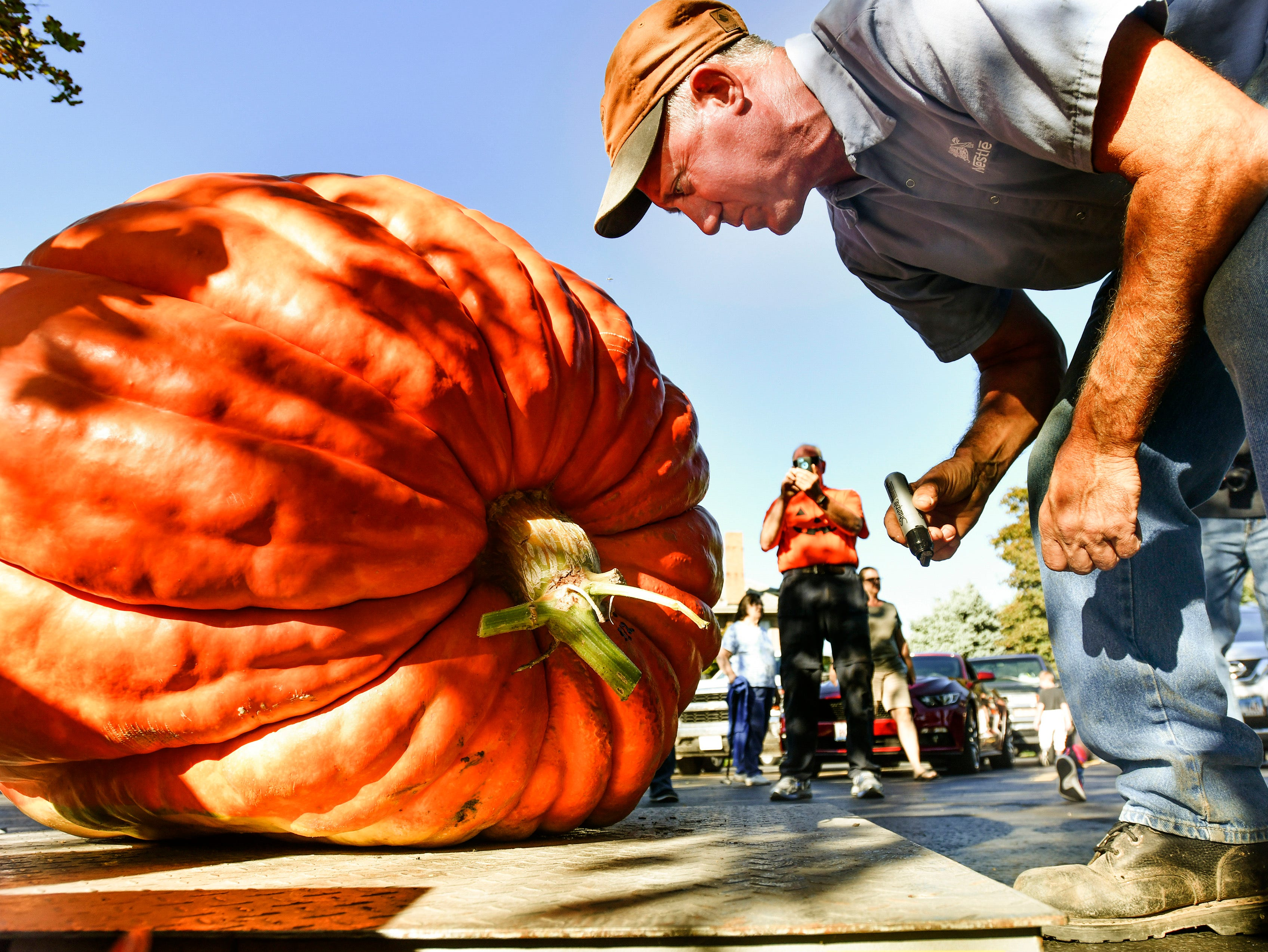 Jim Ackerman of Morton, Ill., marks the largest of the pumpkins weighed at the Morton Pumpkin Festival Pumpkin Weigh Off in Morton, Ill., on Tuesday, Sept.11, 2018. Joe House of Princeville, Ill., took top prize with the largest pumpkin, tipping the scale at 532 pounds.