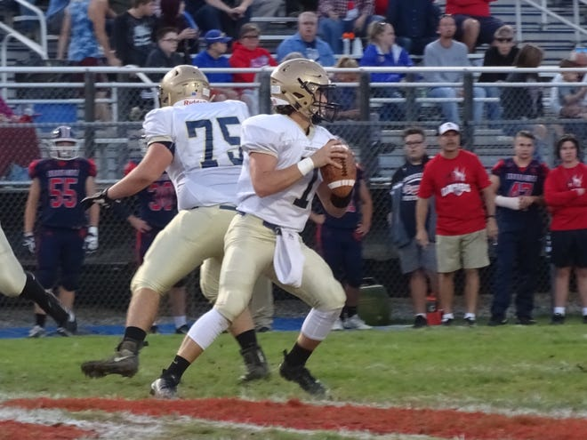 Lancaster senior quarterback Tyler Monk drops back to pass during the Golden Gales' 50-14 Ohio Capital Conference-Ohio Division win over Grove City.
