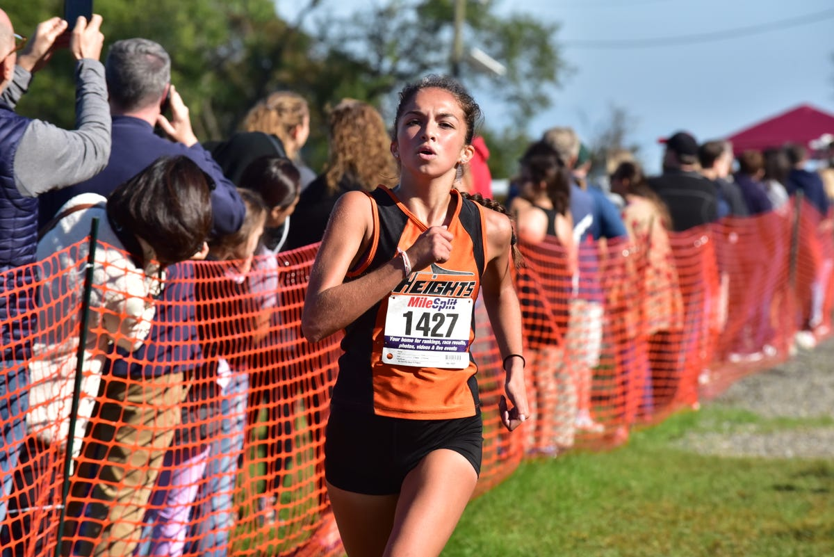 NJ girls cross-country: Team-by-team previews for North Jersey