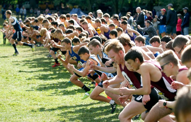 Start of the Boys Seeded Varsity A (Small schools) Michael Ardison Memorial race.