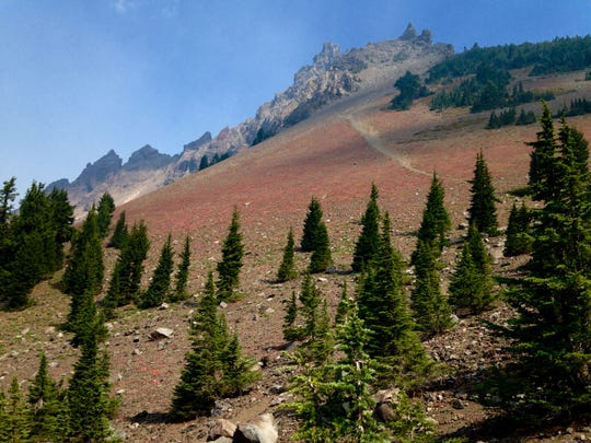 Fall color on Three Fingered Jack
