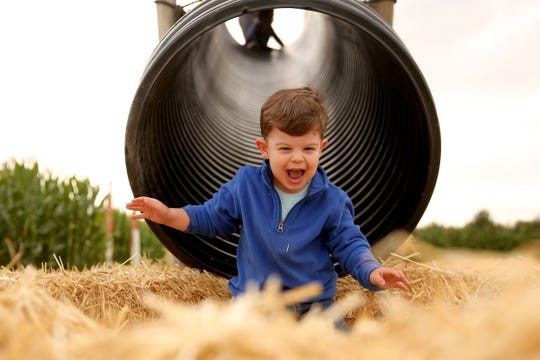 Michael Alkire, 2, of Salem, goes down a slide during the Harvest Festival at E.Z. Orchards in Salem last year.
