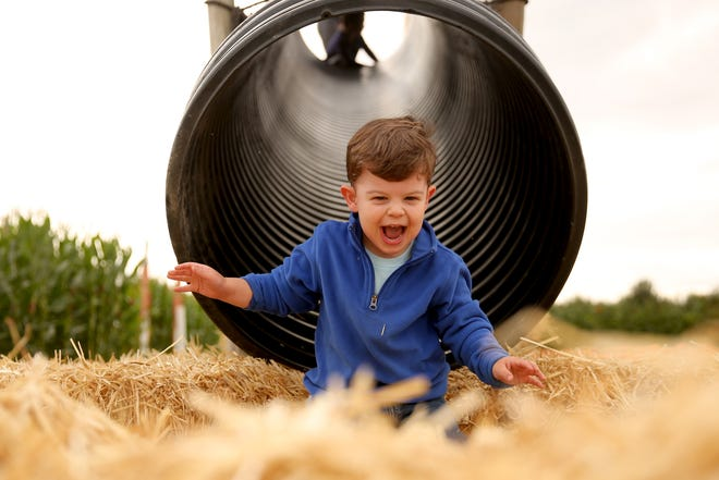 Michael Alkire, 2, of Salem, goes down a slide during the Harvest Festival at E.Z. Orchards in Salem on Saturday, Sept. 29, 2018.