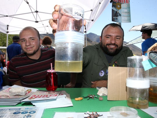 Keven Amezcua, left, and his brother, Luis Amezcua, of the Mosquito Ecology and Surveillance Laboratory at UTEP, show live mosquito larvae at their table during the 14th annual Chihuahuan Desert Fiesta on Saturday.