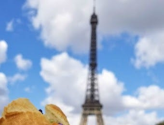 Michelle Schaefer enjoys a picnic lunch in the shadow of the Eiffel Tower.