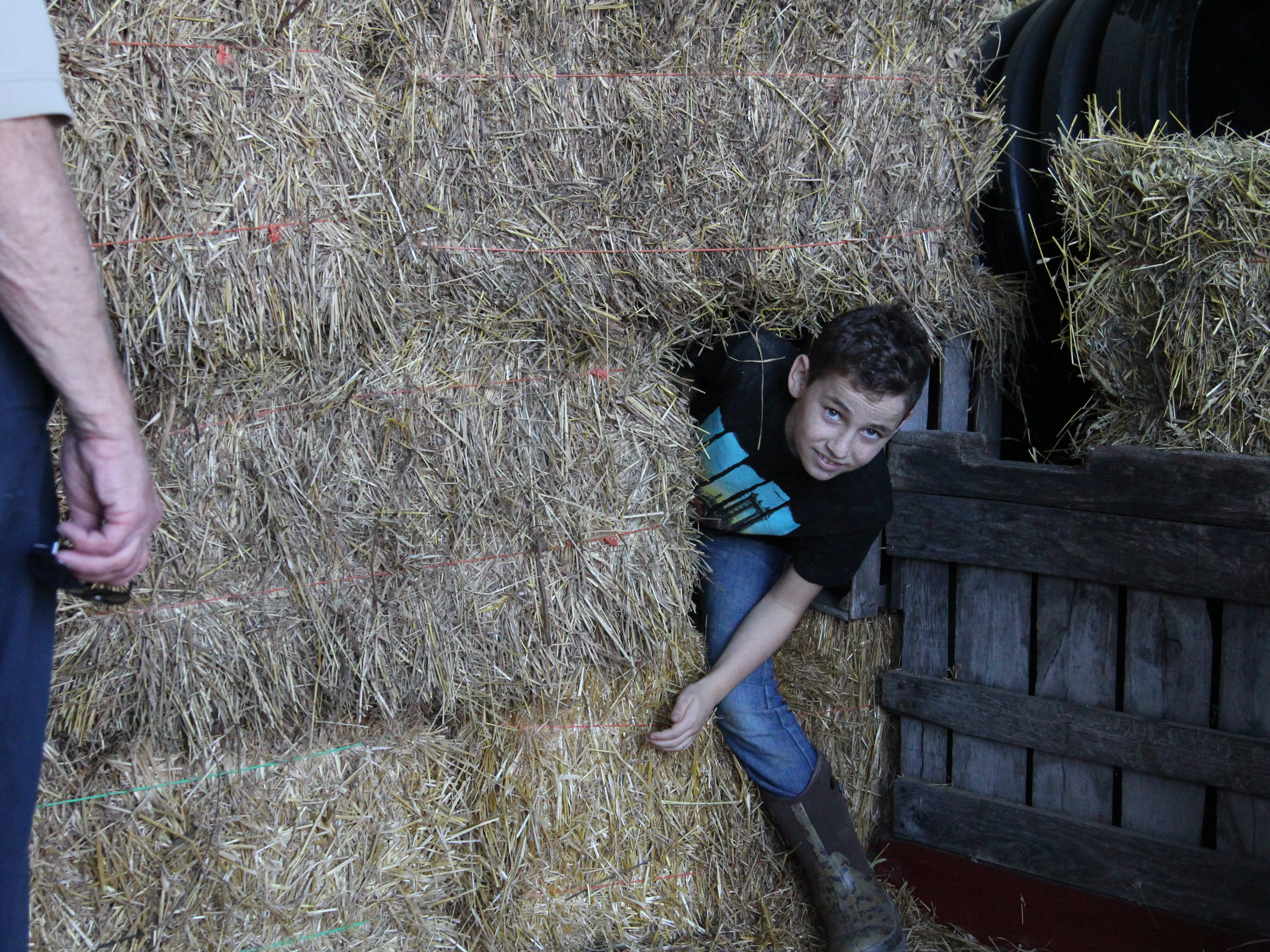 Hunter Faust, 10, slips through an opening in the hay maze at Applefest, which took place Saturday at Lawrence Orchards.