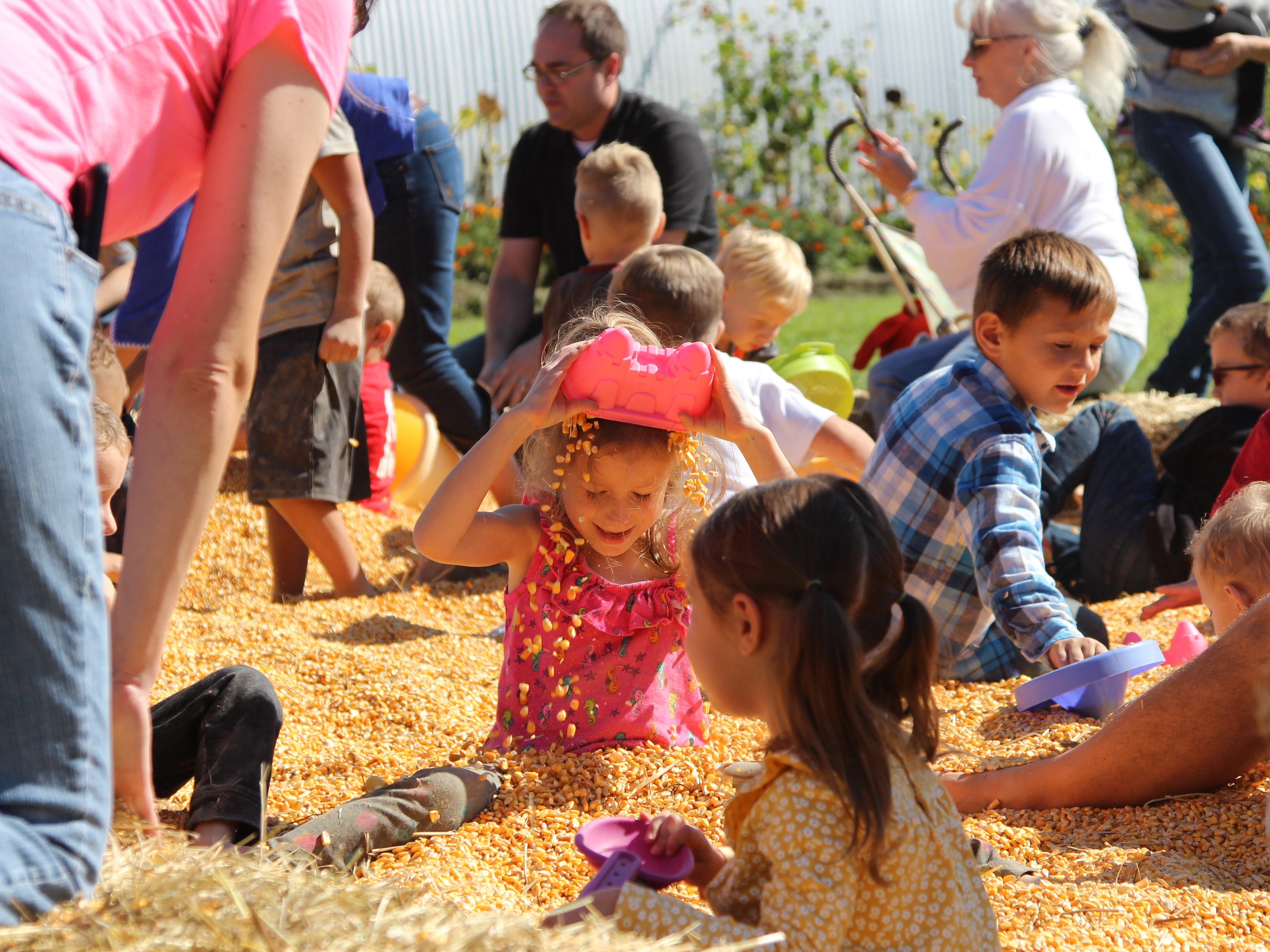 """Mary Lynn Martindell, 6, pours corn kernels over herself in the """"corn box"""" at Applefest, which took place Saturday at Lawrence Orchards."""