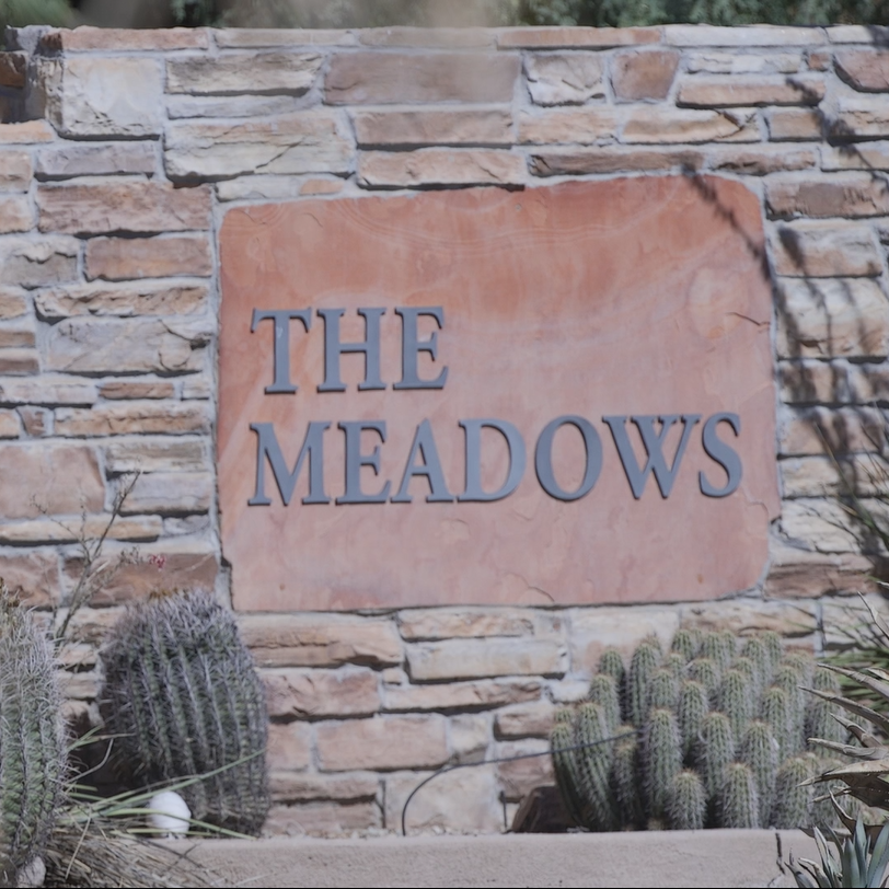 Therapist at Meadows clinic stripped of license for having sex with patient