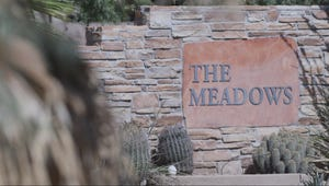 The Meadows is a high-profile facility where Hollywood A-listers and other celebrities seekhelp for their addictions.