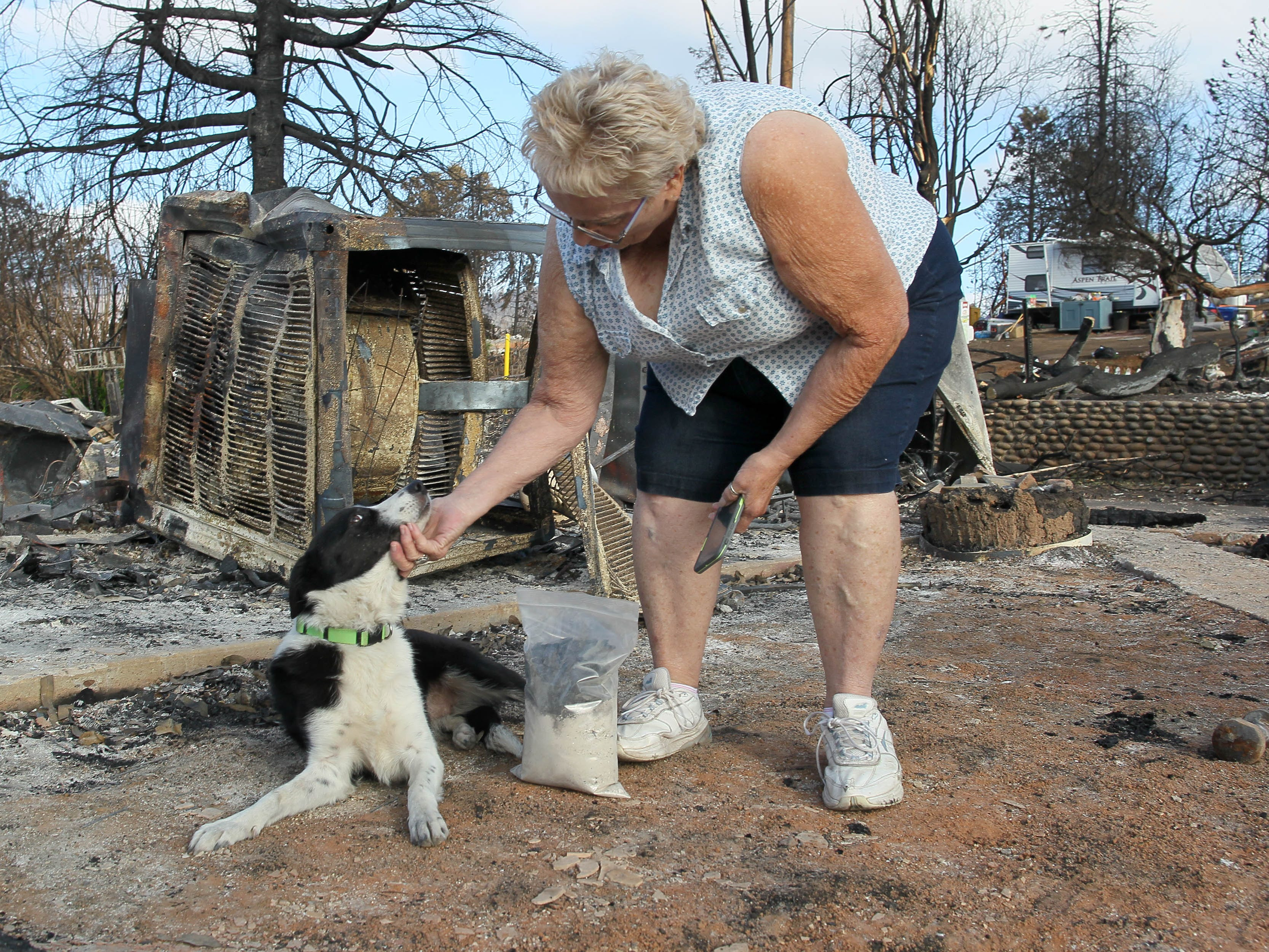 Bonnie Martin gave Piper a pat as thank you for helping locate cremains on her burned-down home in Keswick on Saturday, Sept. 29, 2018. (Hung T. Vu/Special to the Record Searchlight)