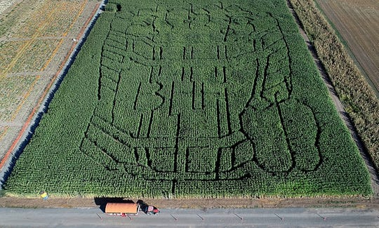 The corn maze at Bauman's Farm is seen from above as a tractor pulls guests on a hayride during their annual  activities Tuesday September 25, 2018.