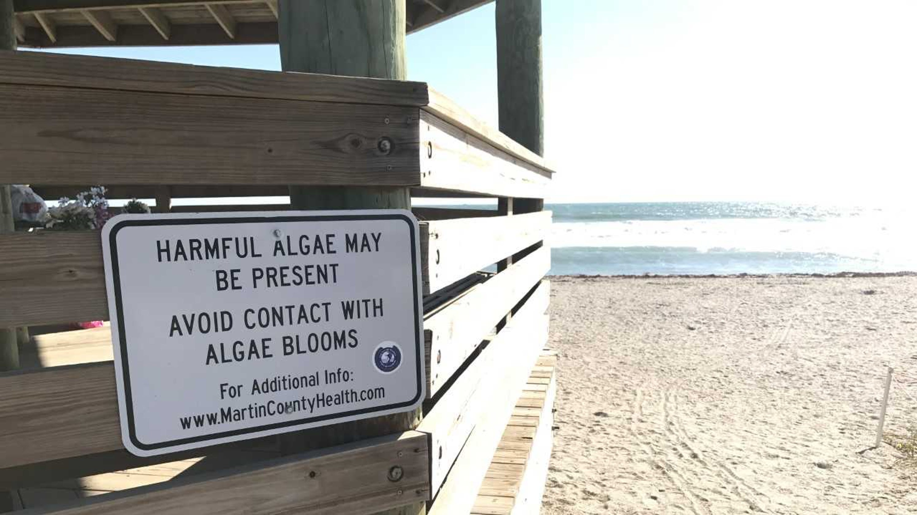 Martin County beach water to be sampled for possible red tide