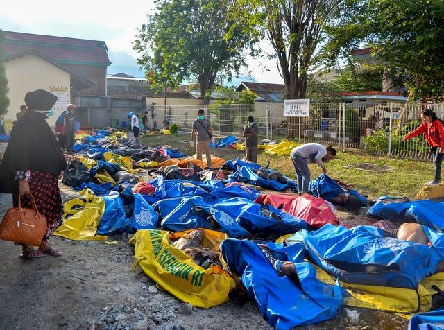 Indonesia earthquake: Death toll tops 800