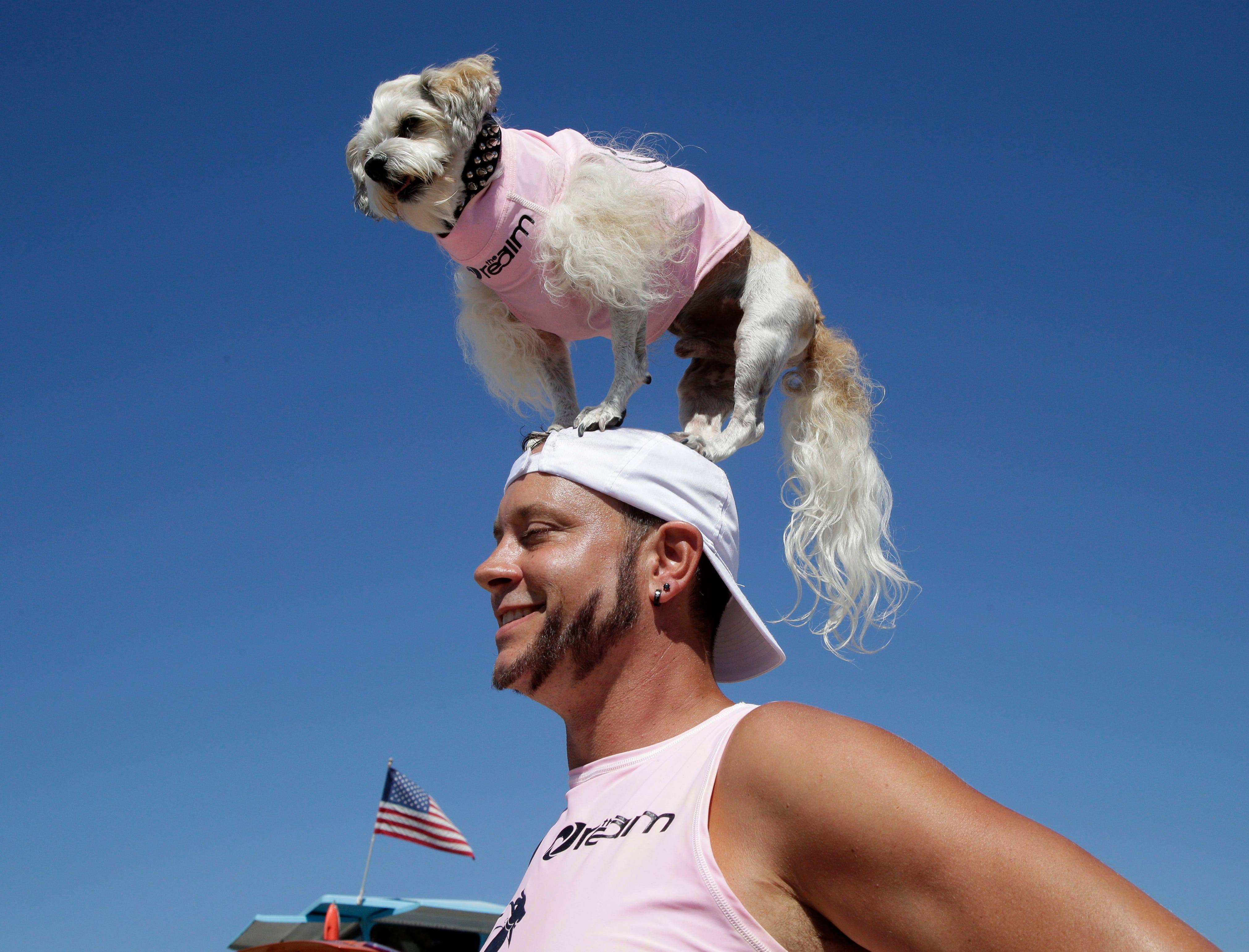 Prince Dudeman stands on the head of his owner, Ryan Thor, prior to competing. A previous version of this caption misspelled the owner's name.