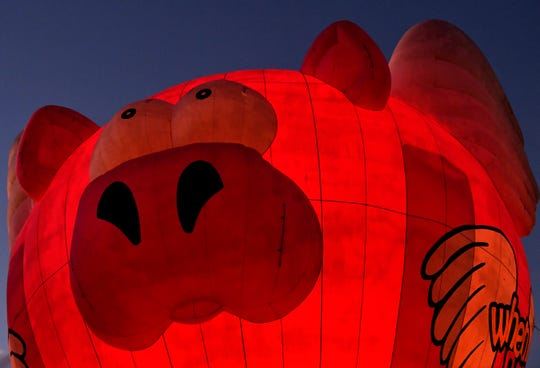 The When Pigs Fly hot air balloon is illuminated with light from its gas jets Saturday.